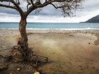 Strand von Plakias n- Kreta