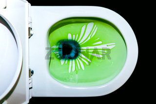 Toilet bowl with green cleaning fluid running in strips inside of the toilet. cleaning Toilet