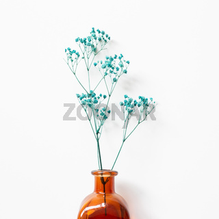 Vase of green baby's breath, gypsophila dry flowers on white background. top view, copy space