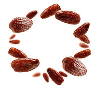 Dried dates levitate on a white background