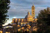 Siena Cathedral Duomo. Sunset