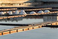 Pomorie salt lake