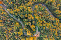 Top down view at a autumnal forest with a double curve and driving automobiles.