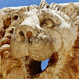 Baalbek lion (Temple of Jupiter) - Baalbek, Lebanon