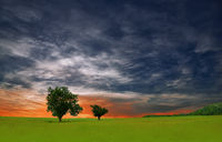 Incredibly Beautiful Nature.Art Photography.Fantasy Design.Creative Green Background.Amazing Colors.