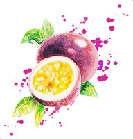 Watercolor Passion Fruit Isolated White Background