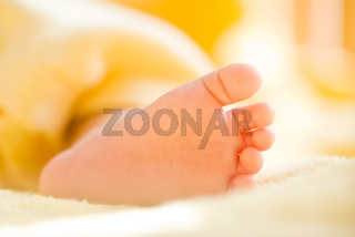 Lovely infant foot.