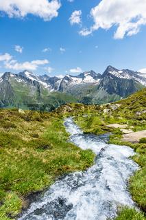 Wildbach im Wieser Werfer Moos Biotop bei Prettau im Ahrntal, Südtirol, Italien