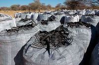 Bags of charcoal produced on a rural farm from encroacher bush