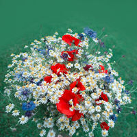 Wild flowers bouquet with daisies and cornflowers.