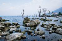 Coast of lake Atitlan with rocks, dead trees and fisherman in traditional canoe, San Pedro la Laguna, Guatemala