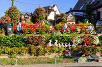 Schöner Garten in Zellenberg, Frankreich