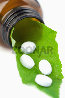 Leaf and pills in a small bottle