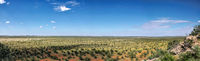 Überblick über die Landschaft im westlichen Etosha Nationalpark, Namibia | landscape at the western part of Etosha National Park, Namibia