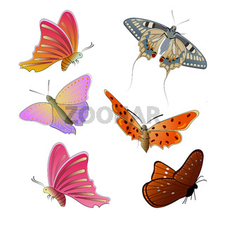 Set of colorful butterflies isolated on a white background. Flying butterflies. Multicolored butterflies with beautiful patterns on the wings. Vector EPS10.
