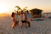 Mixed race friends doing barbecue and drinking alcohol on beach