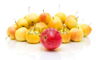 apples on a white background with reflection