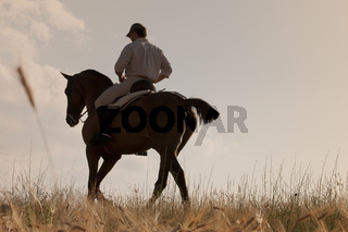 rider and his horse