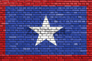 flag of San Jose Province, Costa Rica painted on brick wall