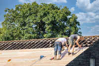 Two builders busy with reparing roof of wooden shed