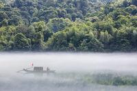 dreamy river scene in summer morning