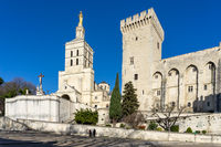view of the historic Palais du Pape and city square in Avignon