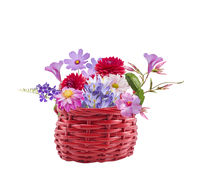 Colorful flowers in a basket on white background