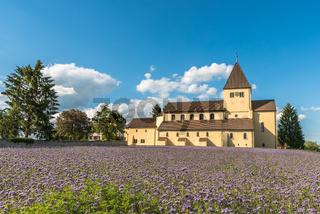 Kirche St. Georg auf der Insel Reichenau und Blumenwiese, Oberzell, Bodensee, Deutschland