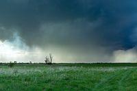 The cloudburst over the meadow with trees, Czulczyce, Poland