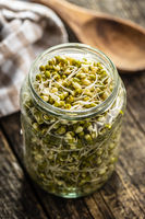 Sprouted green mung beans. Mung sprouts in jar.
