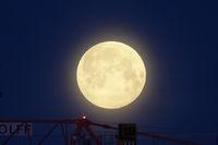 Vollmond, full moon