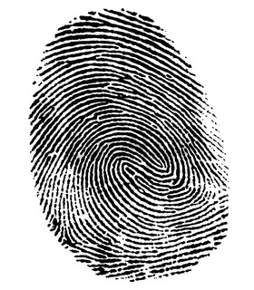 perfect thumb fingerprint