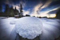 Schneeball