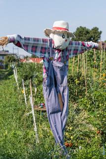 bunte und kreative Vogelscheuche im Garten - Dekoration