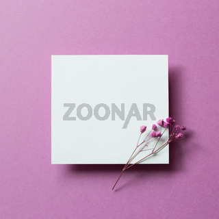 Blank white card paper with dry flower on purple background. top view, copy space
