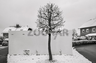 Winter - Das Vogelhaus am Baum