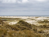 Sand dune landscape called Ladder to heaven on the island of Amrum, Germany.