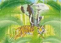 Tiere- Jungle.jpg