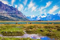 Los Glaciares in Argentina