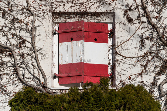 Closed rustic window shutters with red white Austrian flag at wall rambeled with leafless ivy