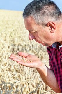 Farmer controls his wheat field