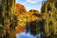 Autumn in Moczydlo Park in Warsaw