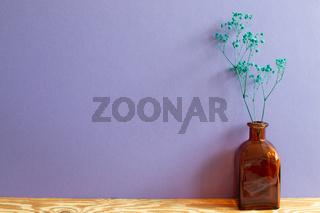 Vase of green baby's breath, gypsophila dry flowers on wooden table. purple wall background. Home interior