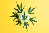 CBD Cannabidiol Cosmetic cream and Cannabis leafs on yellow background, alternative medicine concept