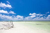 Urlaub und Tourismus Konzept
