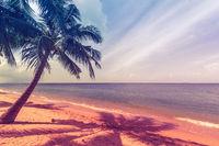 A beautiful beach on a tropical Island