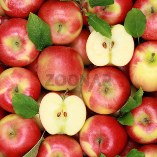 Äpfel mit Blättern bilden einen Hintergrund
