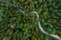 A bending road from above leading through a green forest. Drone shot for wallpapers, top down from above aerial shot in the late summer.
