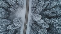 country road in winter season with fresh snow