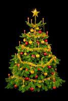 Prachtvoller Weihnachtsbaum auf schwarz